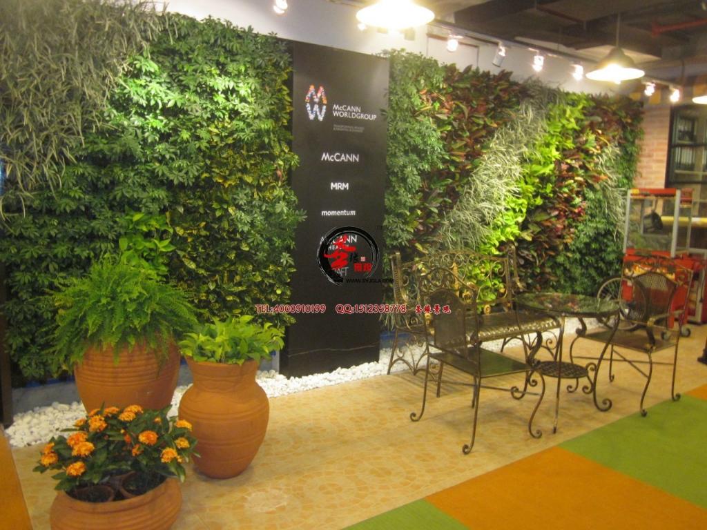 植物 墙面 装修