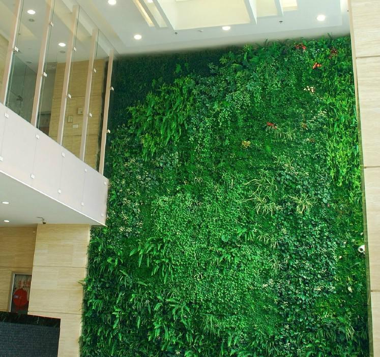 植物 墙体 装修