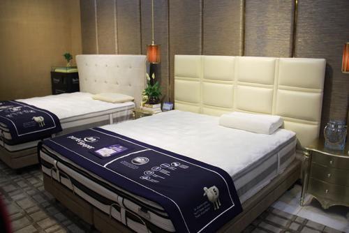 上海舒达床垫(真北红星店)