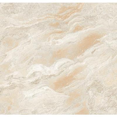 所有商品 建材 家装主材 瓷砖 微晶砖 森尼瓷砖 微晶石系列 天堂鸟878