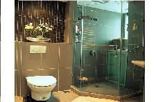 美丽华淋浴房瑞高I型(德国瑞高五金件可做一字、直角、钻石形)