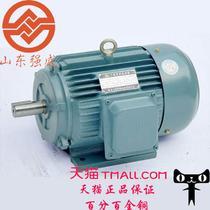 恒速5.5-2-4-6电动机驱动电动机交流电动机通用封闭式感应电动机B级异步电动机 电动机