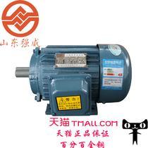 恒速380V电动机驱动电动机交流电动机通用封闭式感应电动机B级异步电动机 电动机
