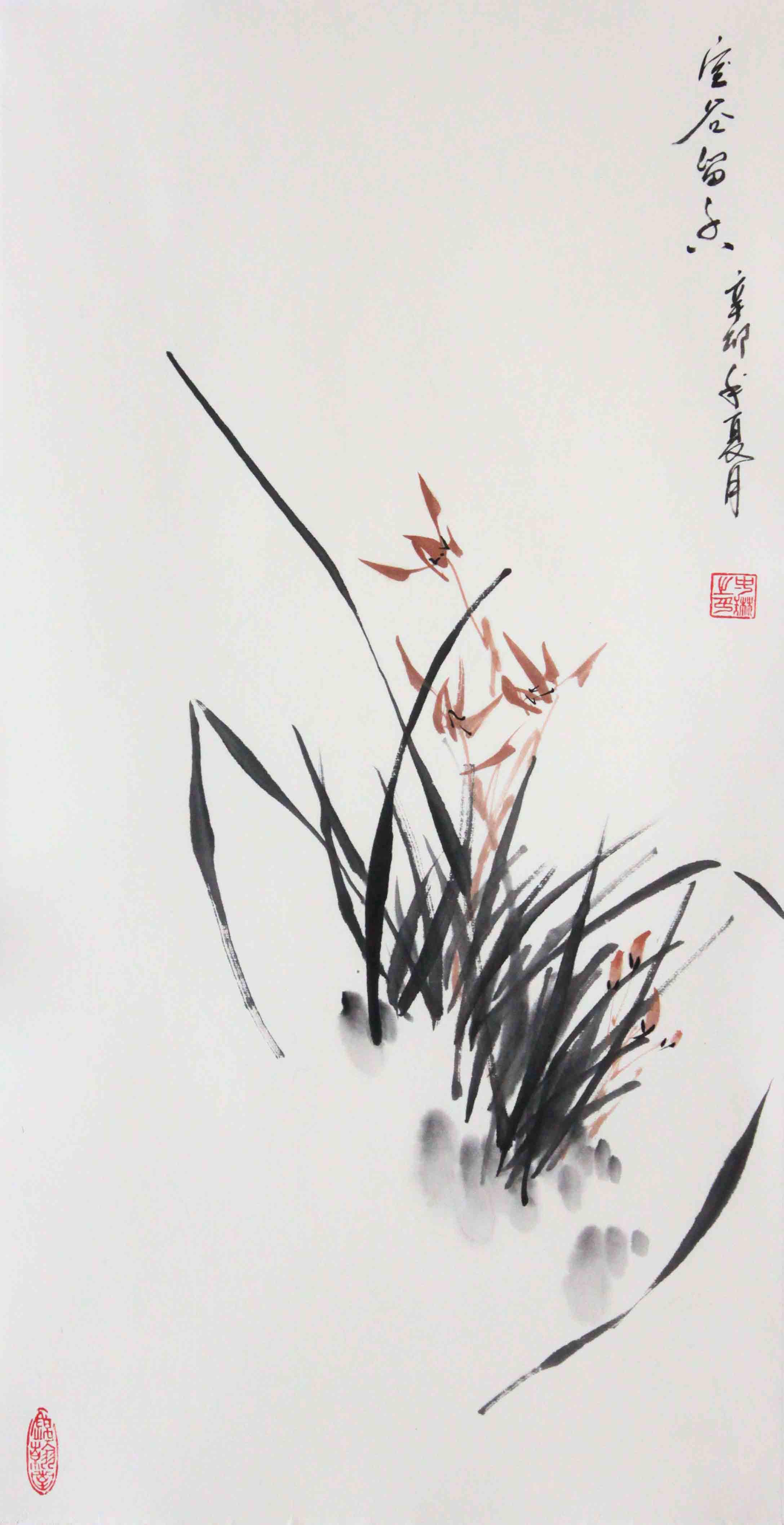 红褐色无框独立植物花卉