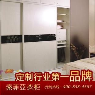 索菲亚 柜门/平米人造板光面密度板/纤维板三聚氰胺板推拉上下滑移门成人简约现代 衣柜