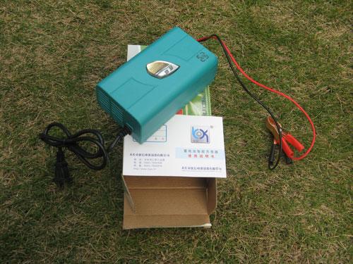 ECO-WORTHY 汽车 蓄电池