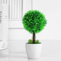 款式二款式一 仿真植物