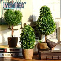 HL-00142118仿真植物