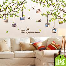 风景 照片树C898墙贴
