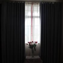 1.4宽1.8高布装饰+全遮光平帷涤纶纯色普通打褶打孔帘穿杆帘简约现代 窗帘