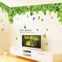 平面墙贴植物花卉 墙贴