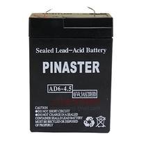 拿斯特 照明用 蓄电池