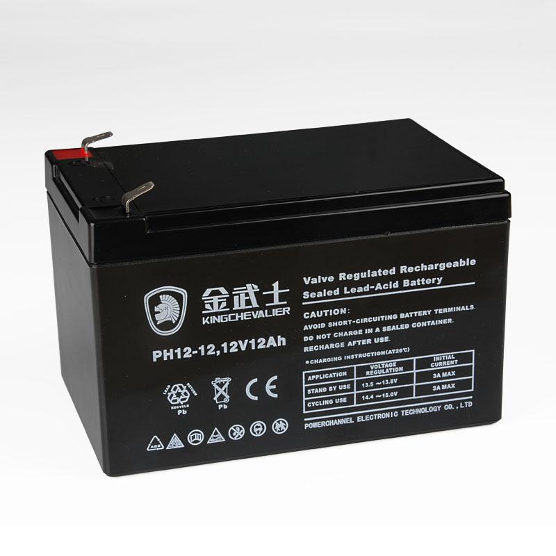 金武士 計算機系統 PH12-12蓄電池