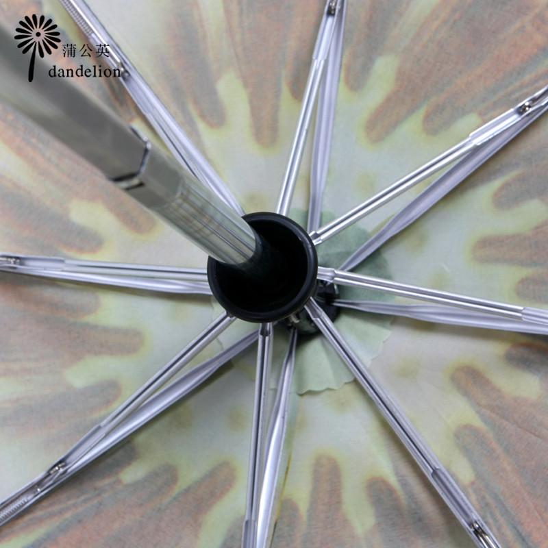 蒲公英碰击布晴雨伞三折伞成人遮阳伞