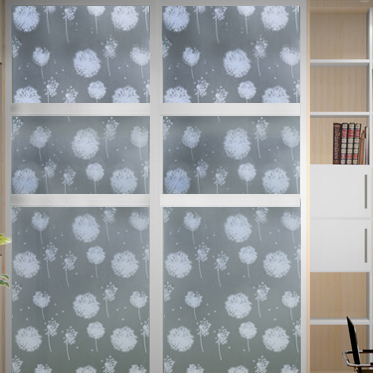 安曼 植物花卉 蒲公英(玻璃贴膜)玻璃贴膜