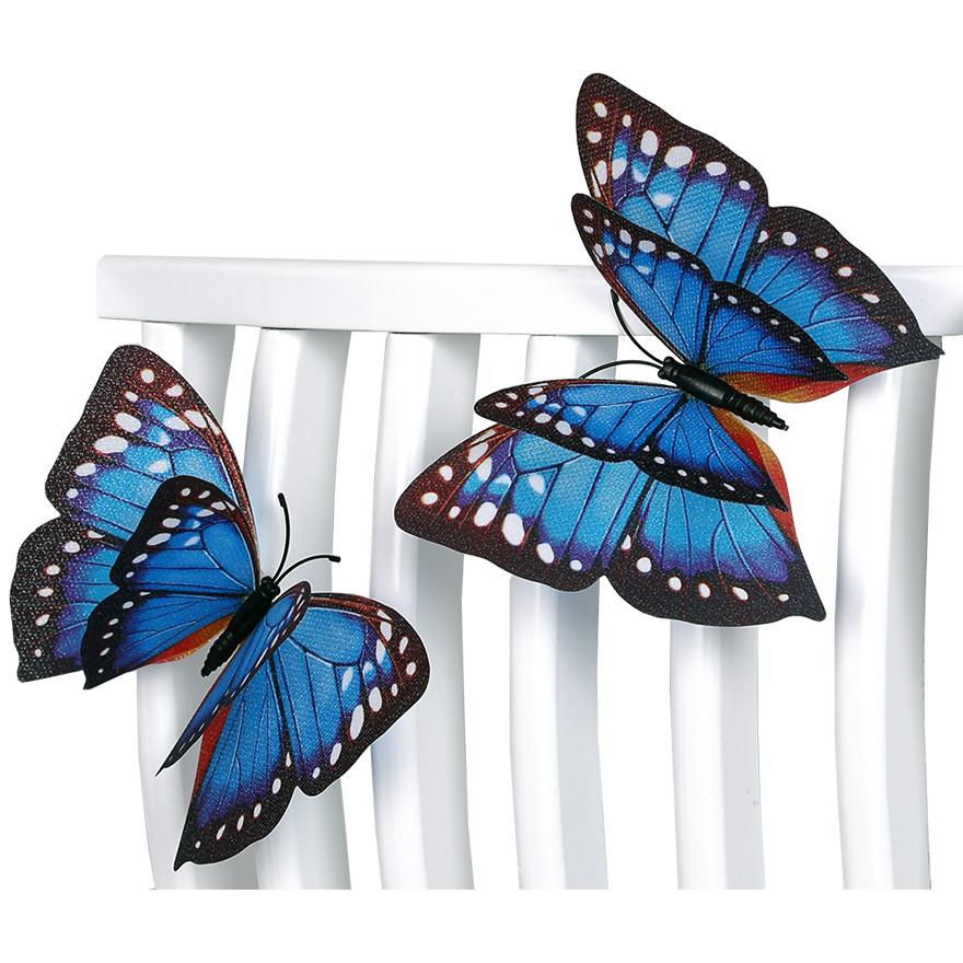 致本家居 蝴蝶 HD-Z冰箱貼
