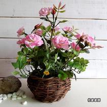 玫红白色粉红黄色 仿真植物