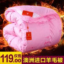 绗缝冬季斜纹3斤-8斤涤棉羊毛 被子