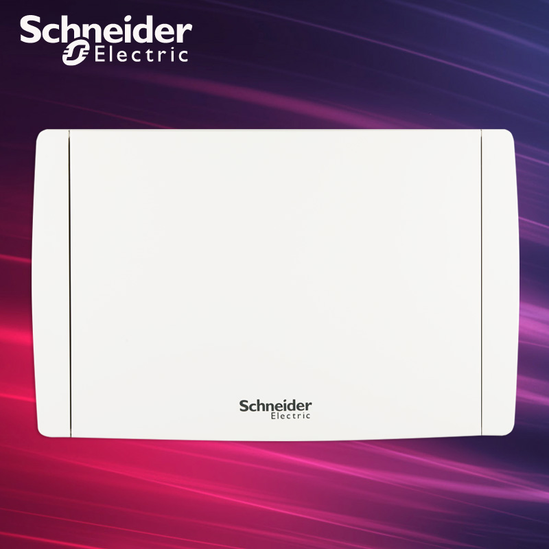 施耐德 暗装不透明门单排20位模数配电箱配电箱