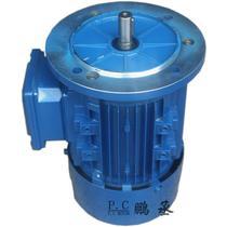 恒速电动机驱动电动机交流电动机通用封闭式三相B级异步电动机 电动机