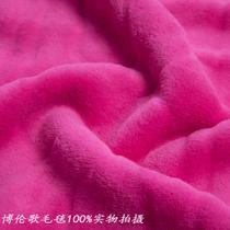 2%-3%珊瑚绒毯一等品冬季植物花卉简约现代 毛毯