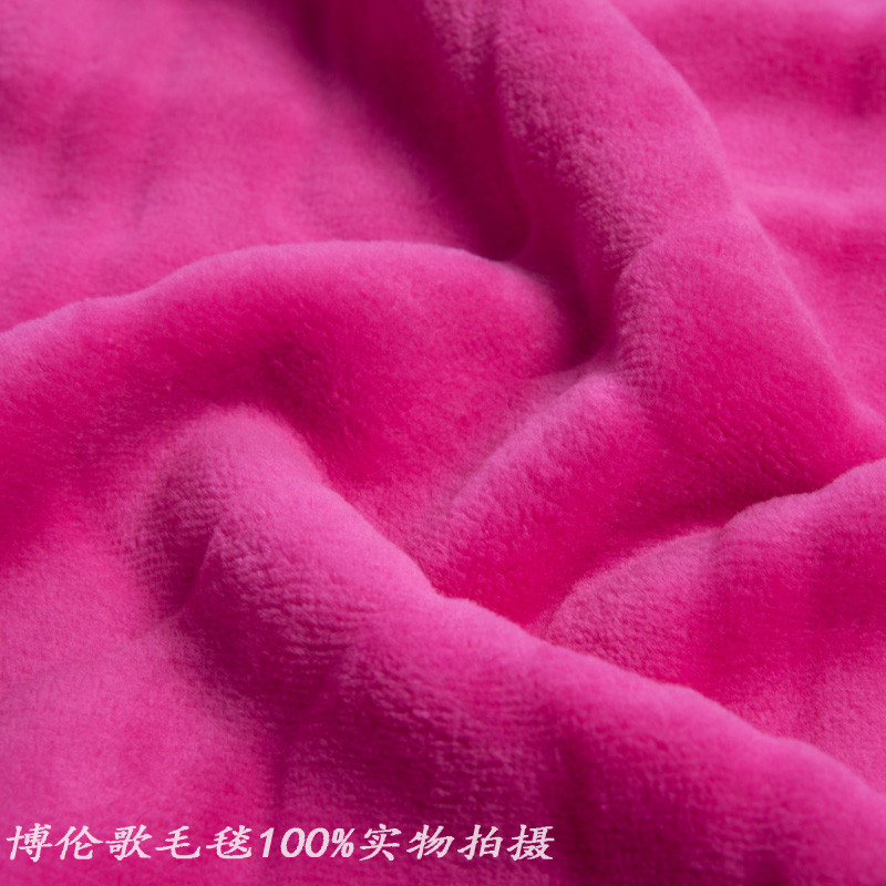博倫歌 2%-3%珊瑚絨毯一等品冬季植物花卉簡約現代 毛毯