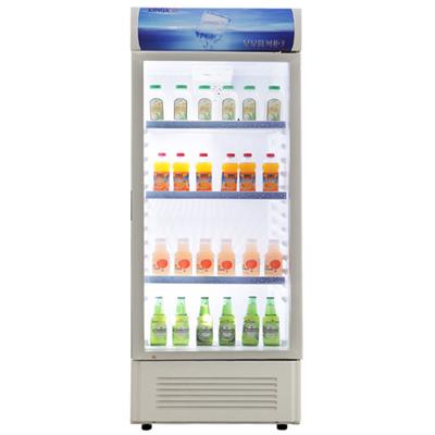 星星 浅灰色冷藏41dB定频温带型(N)单门R600a直冷立式冰柜机械控温 冷柜