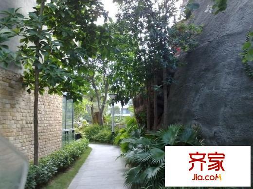 旭飞桐林半山花园