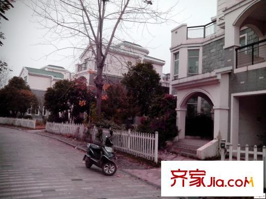 武汉玉龙岛花园别墅小区详情和图片