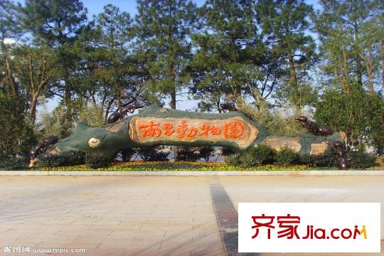 朝阳峰汇南昌市动物园