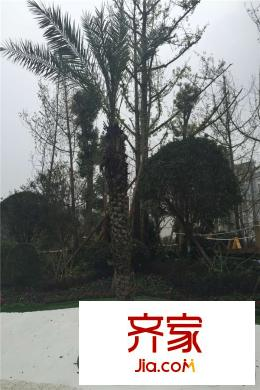 成都香山长岛小区装修案例