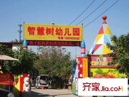 苏堤杭城智慧树幼儿园