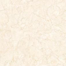 81012瓷砖