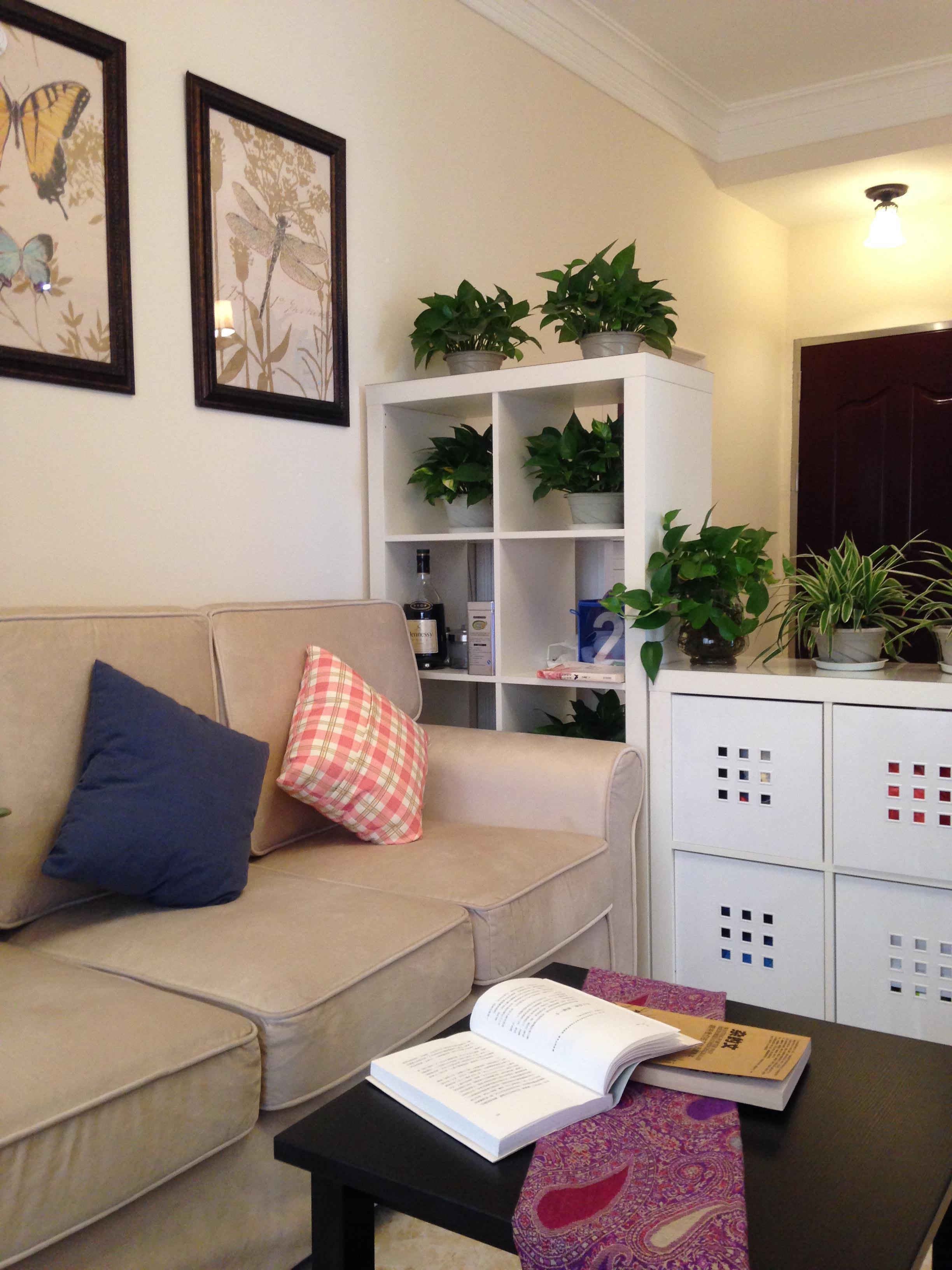 小户型田园风格家装饰柜隔断设计