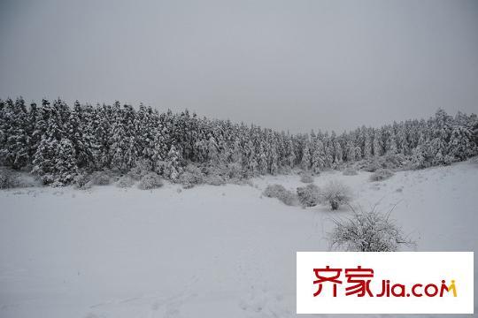 旗乾君鼎壹号周边仙女山风景区