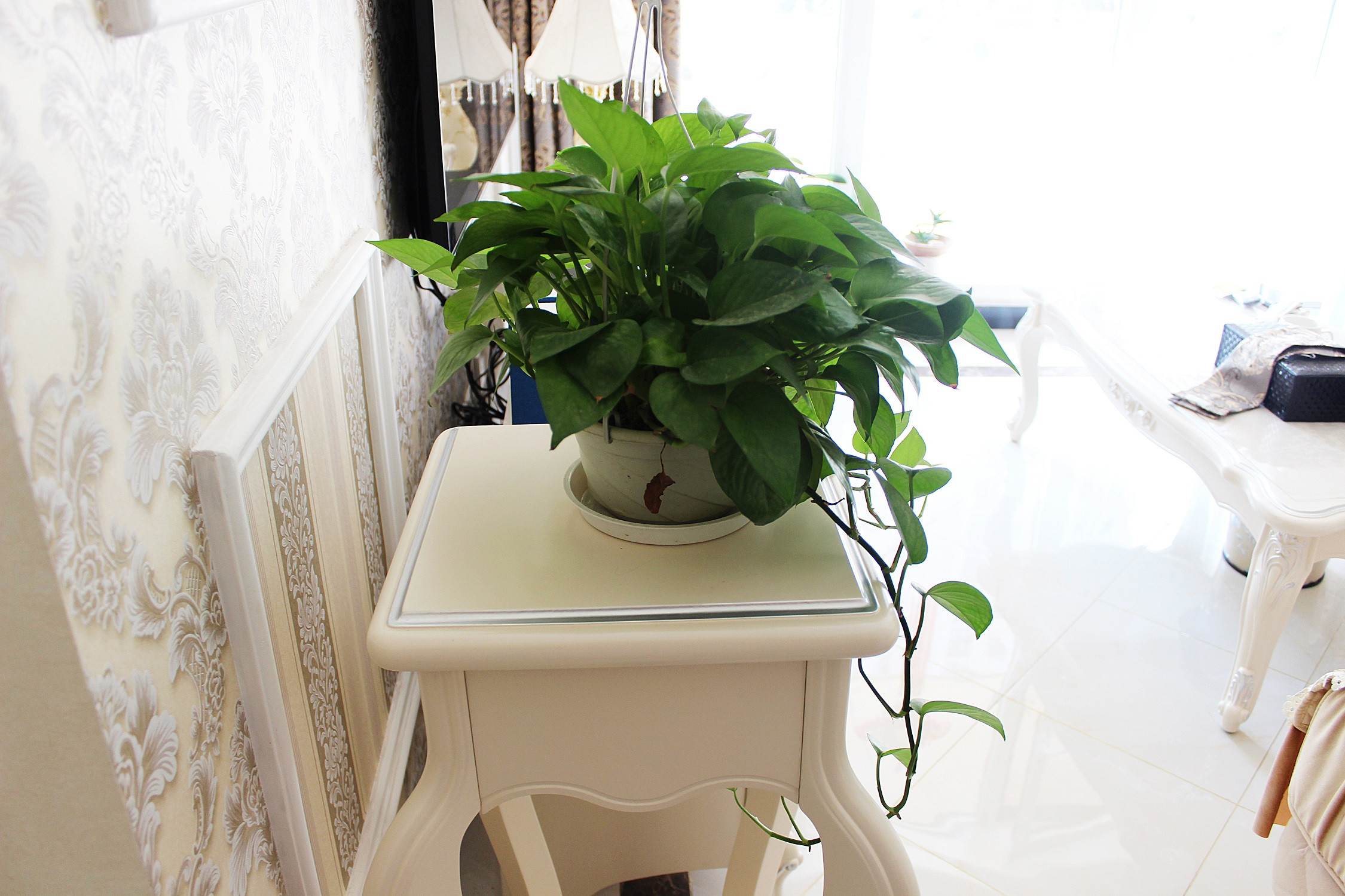 80平欧式风格家客厅绿植