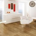 德国柯诺莱茵阳光地板 实木复合 FDF008 仿古拉丝面