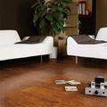 德国柯诺莱茵阳光地板 实木复合 FDP011 平面大倒角