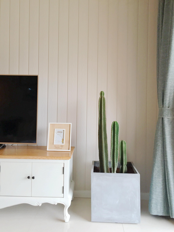 北欧三居空间电视背景墙图片