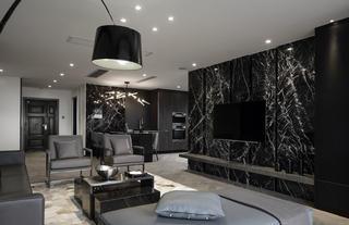 黑白灰三居设计电视背景墙图片