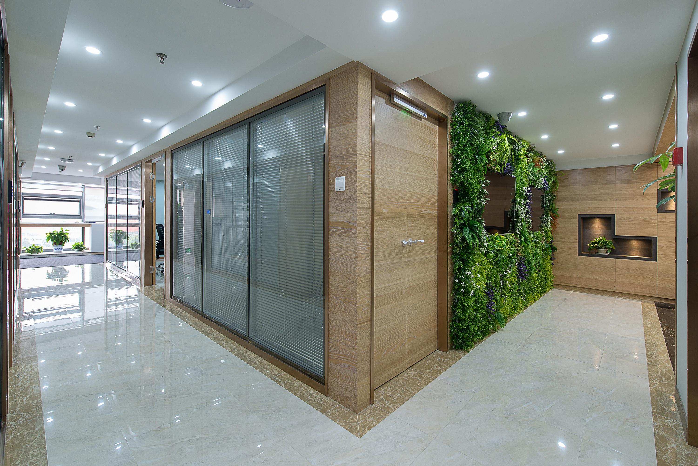 绿色人文办公楼装修过道图片