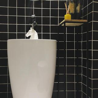 黑白灰调简约装修洗手台一角