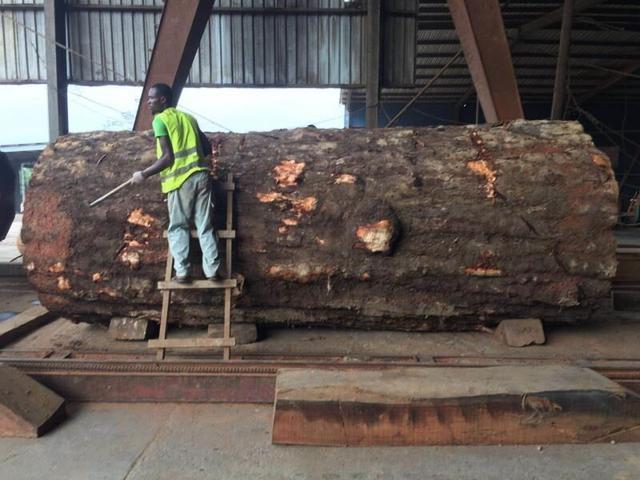 广州家具城内幕交易具有!曝光8万的实木家具什么家标价海拉尔图片