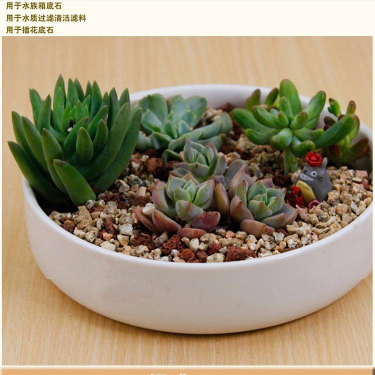 盆栽 珍珠岩