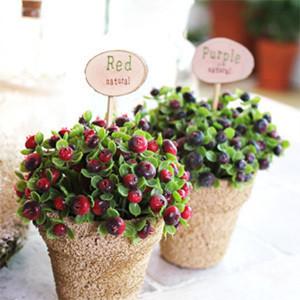 盆栽 可爱