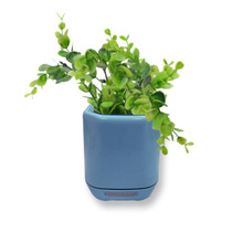 植物 防水