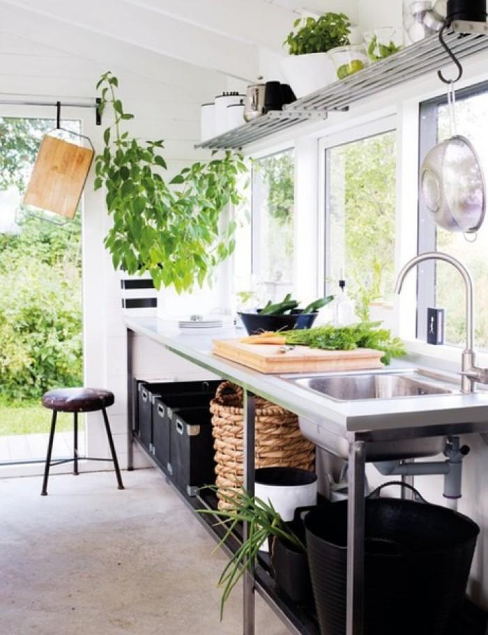 绿植 厨房