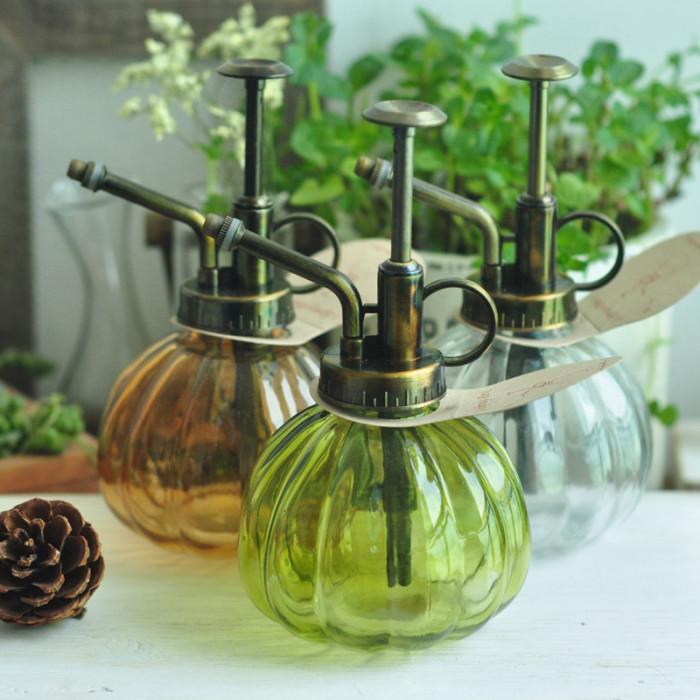 植物 水壶