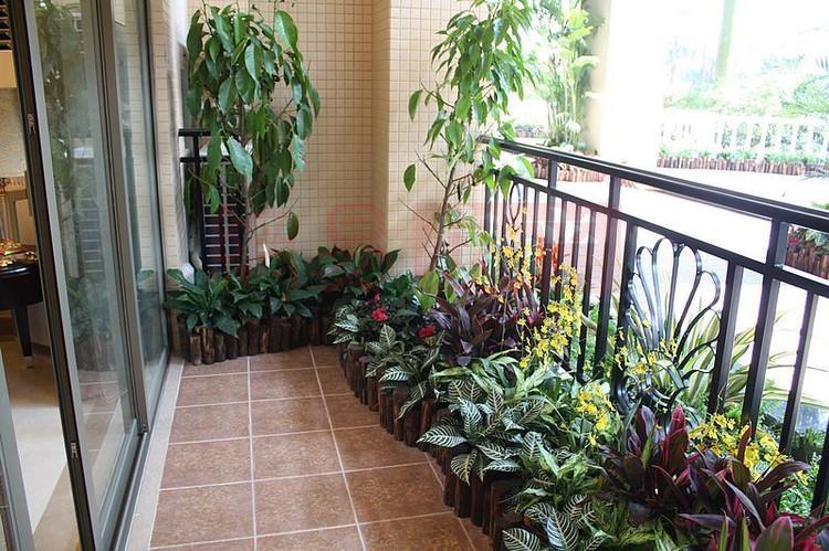 阳台 花园