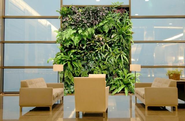 植物 墻面 裝修